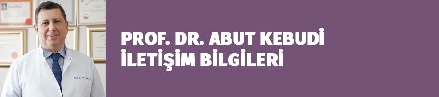 Prof. Dr. Abut Kebudi İletişim